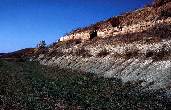 Road cut along US-40. Photo courtesy Grace Muilenburg, KGS. Nov. 1960. Cottonwood Limestone and Eskridge Shale. Wabaunsee County, KS.